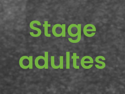 Stage Adultes #1